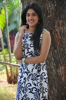 Dhanya Balakrishna dazzling pics 004.jpg