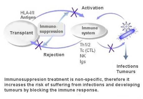 Side effects of immunosuppressant medications