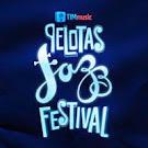 Pelotas Jazz Festival Música