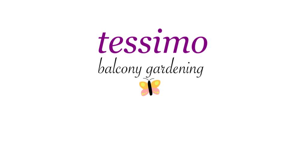 Mein Logo