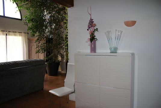 Villa olivier - L'entrée