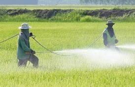 Gli alimenti contengono pesticidi? Sì, e il loro uso è del tutto legale