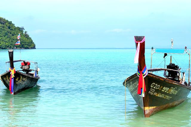 Pitkähäntävene