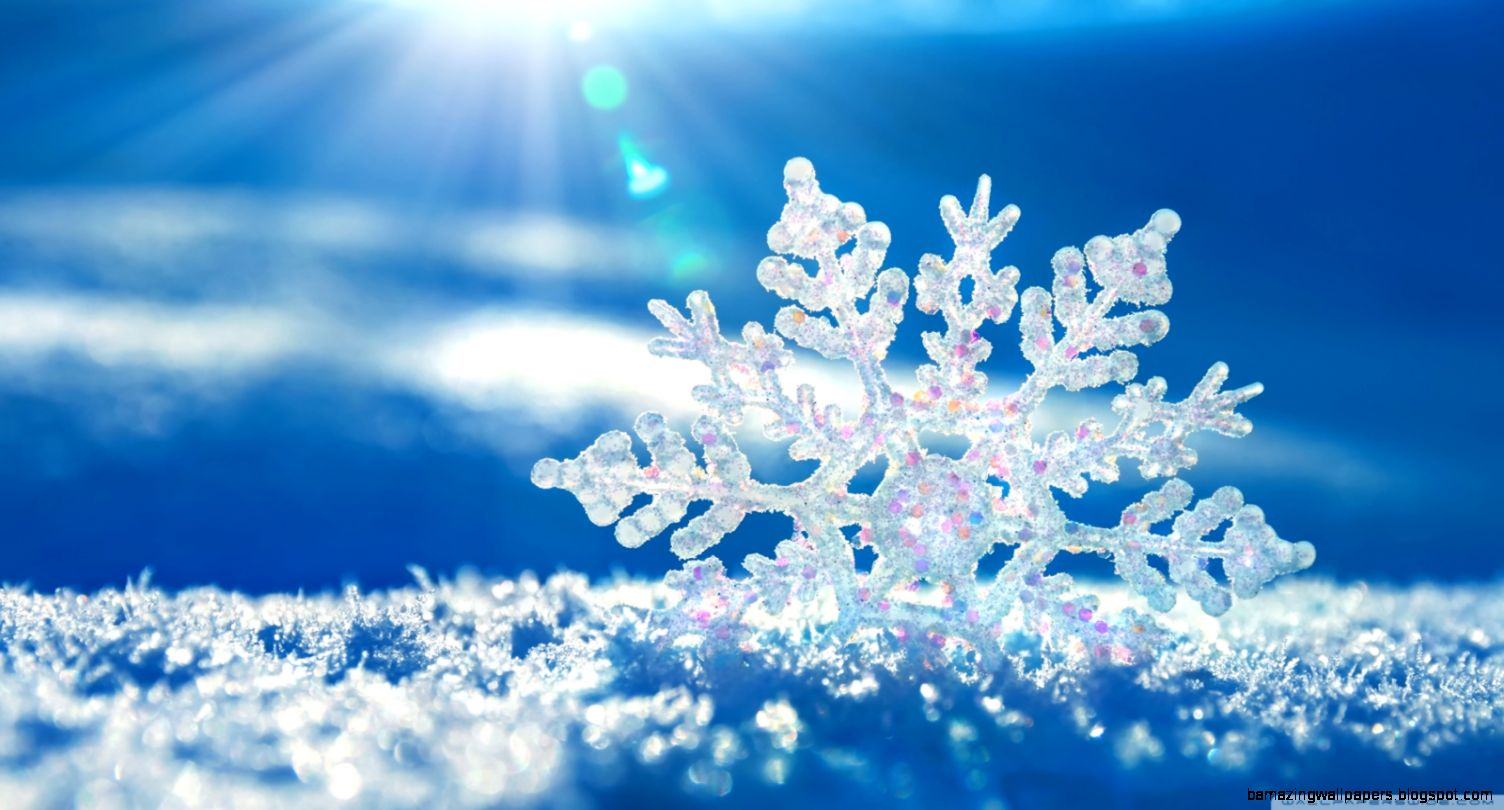 Snowflake HD desktop wallpaper  Widescreen  High Definition