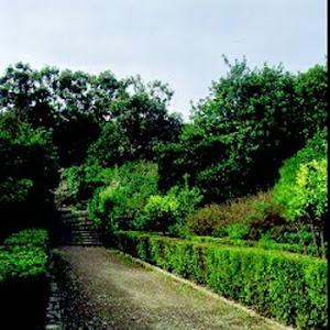 Visita virtual al Parc del Guinardó