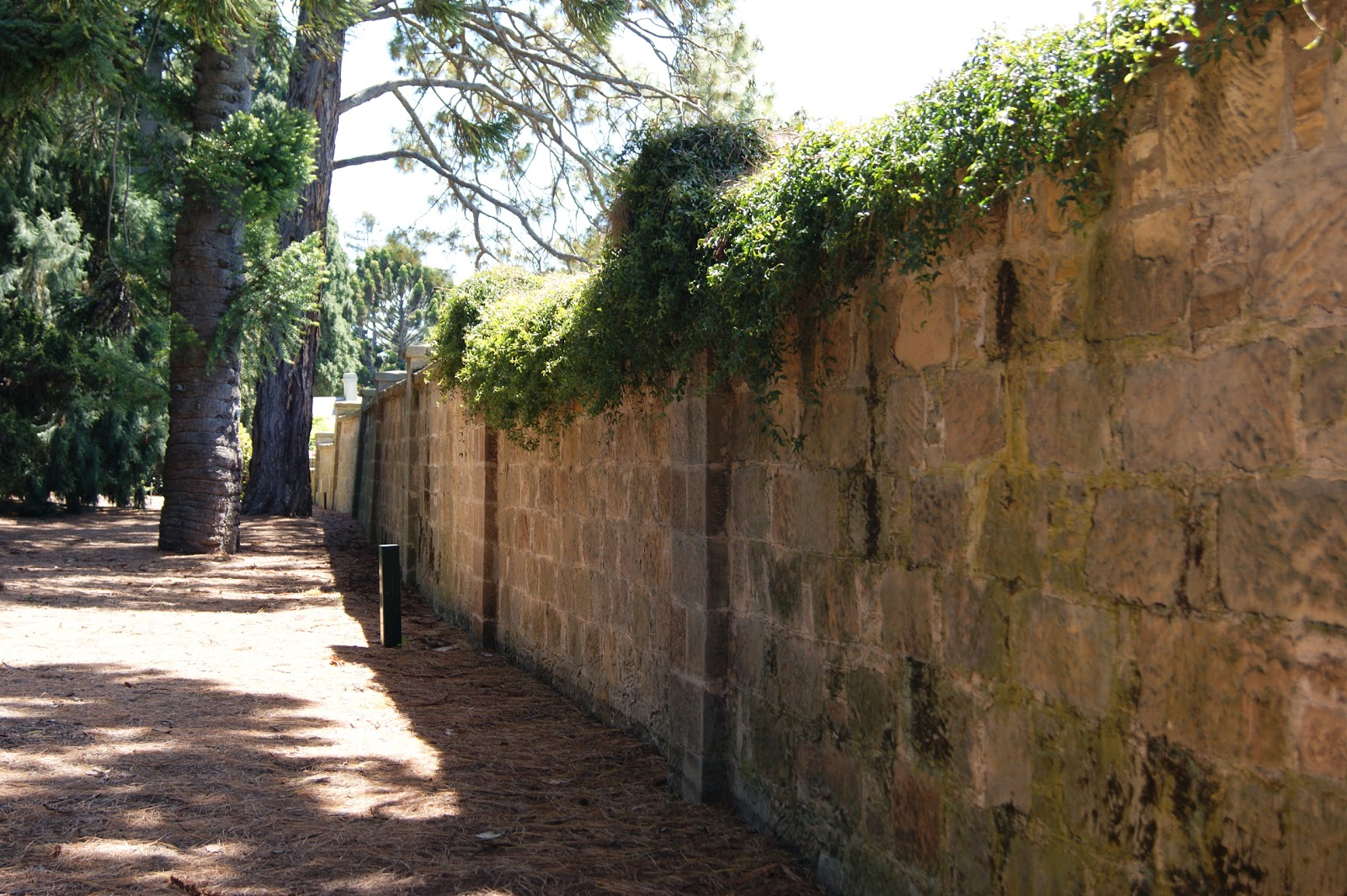 On The Convict Trail: Royal Tasmanian Botanical Gardens
