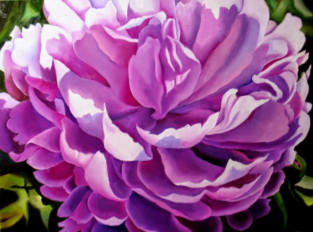10 bức tranh hoa mẫu đơn đẹp nhất, hoa mẫu đơn trắng