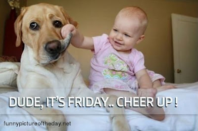 Dude Its Friday Cheer Up Dog