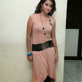 Bhanu Sri Hot Photos at Veedi Pourusham Movie Press Meet 2