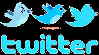 Twitter Birds PNG Logo