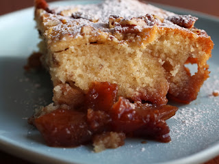 apple cranberry pudding cake