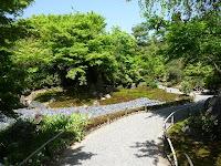 新緑の獅子吼の庭