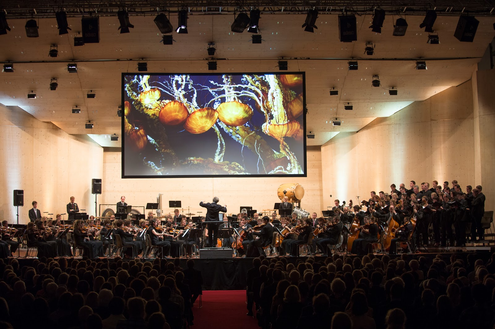 21st Century Symphony Orchestra mit Ludwig Wicki. Photo: Gstaad Menuhin Festival & Academy.