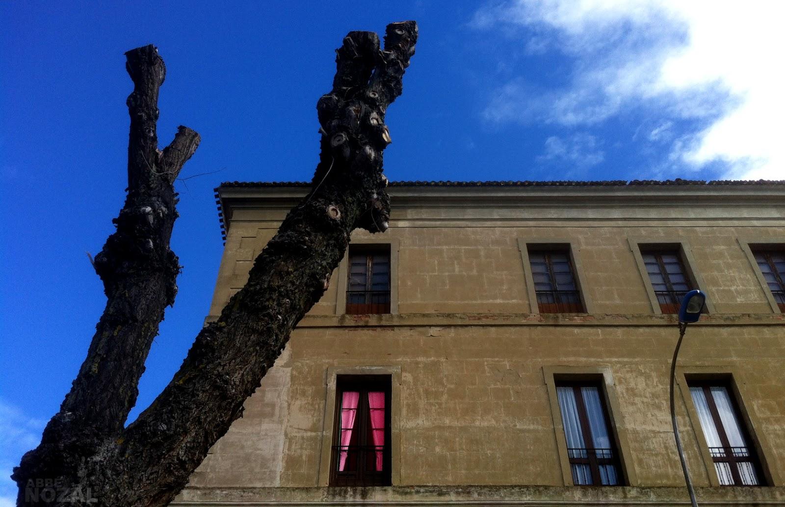 Recontra palacio, 2015 Abbé Nozal