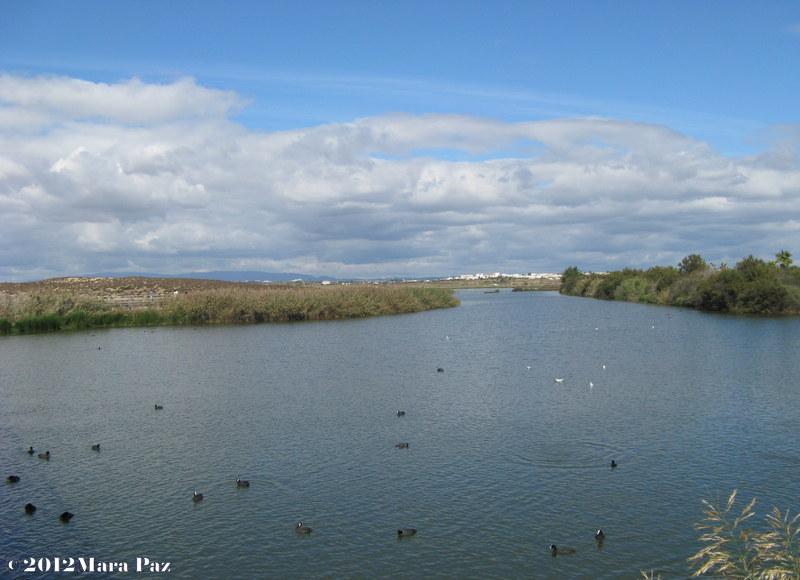 Salgados Lagoon, Portugal