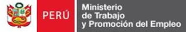 MINISTERIO DE TRABAJO Y PROMOCIN DEL EMPLEO