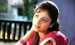Hari Priya in Half Saree Photo Stills in Pilla Zamindar-thumbnail