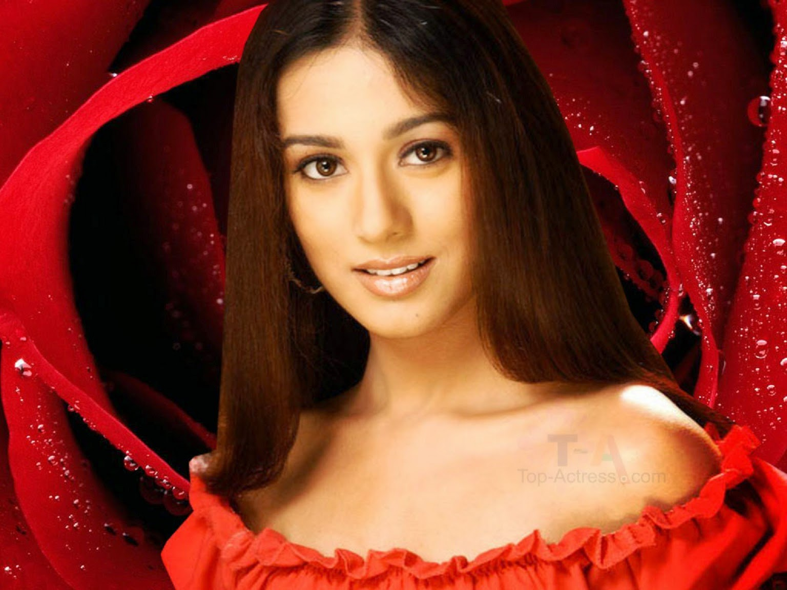 star hd wallpapers free download: amrita rao hd wallpapers free download