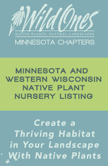 Native Plant Nurseries