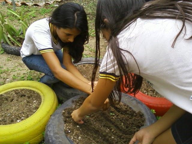 horta e jardim em pneus : horta e jardim em pneus:COLÉGIO RÔMULO GALVÃO DE POÇOS: JARDIM E HORTA COM PNEUS