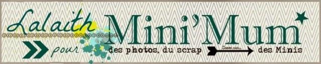 Ancienne Dt Mini'mum scrap