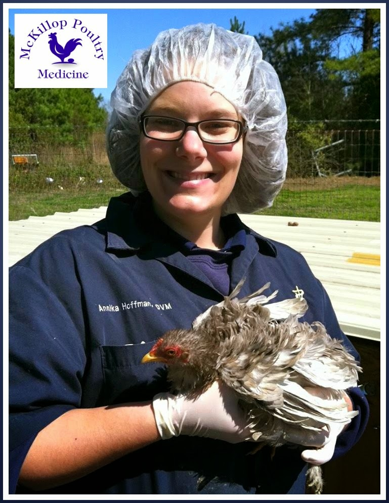Poultry Veterinarian, Dr. Annika McKillop, properly attired to treat her patients at home.