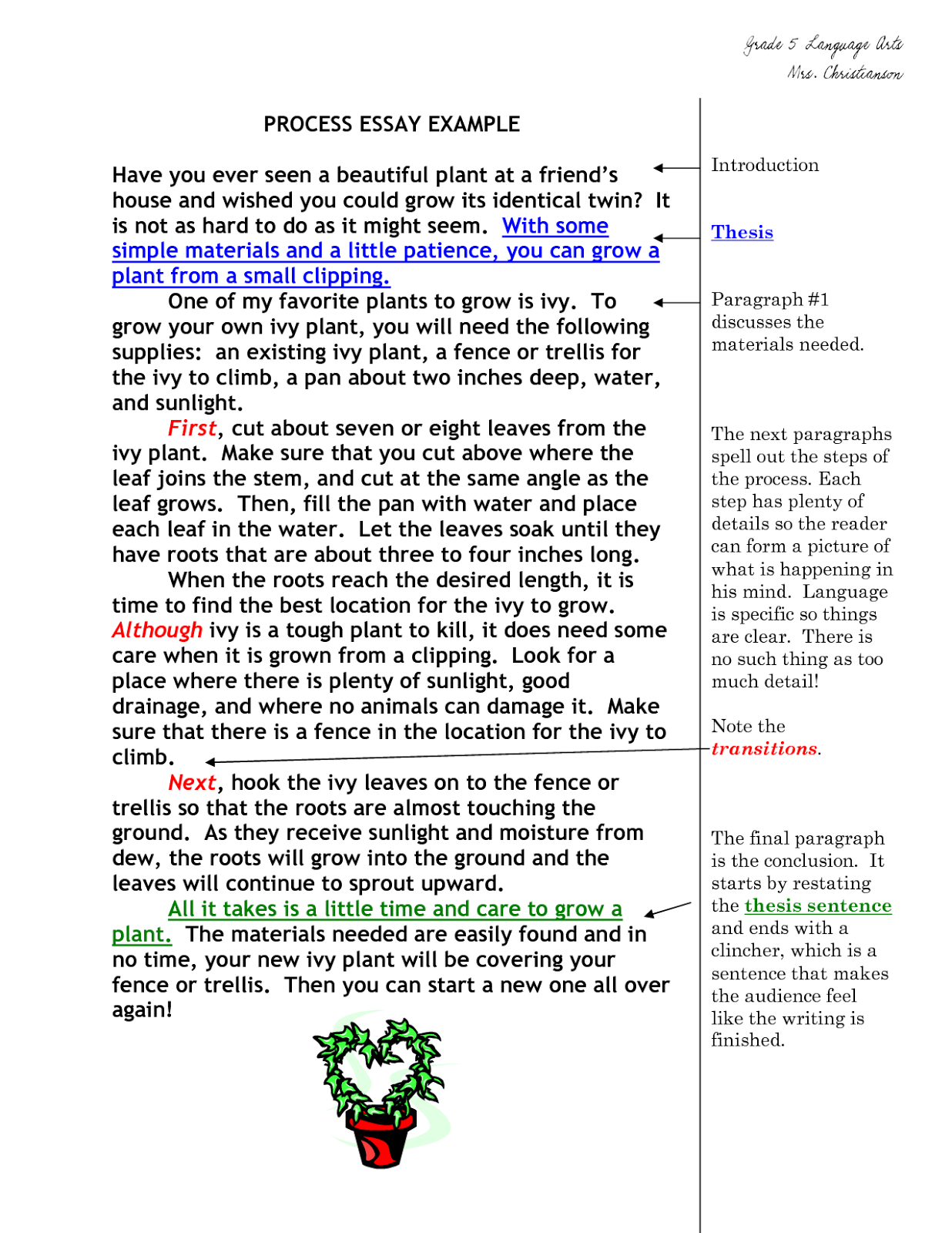 types of damages essay