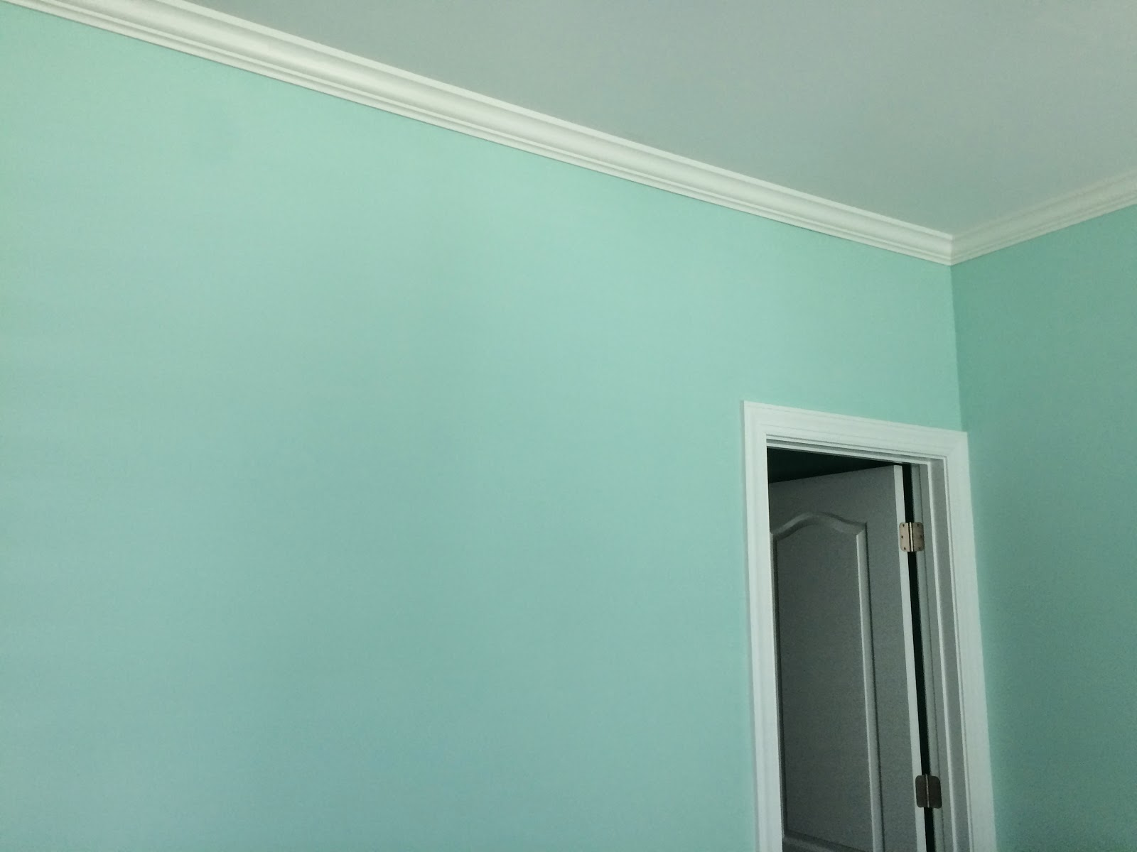 aqua paint colorShades of Aqua Paint  Painting the Nursery  LaForce Be With You