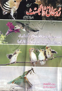 download free Rohani Digest March 2013 pdf