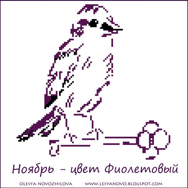 ноябрь - цвет фиолетовый
