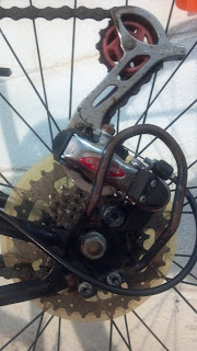 back cogs and derailleur of a bicycle