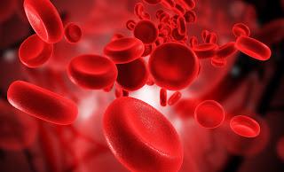 Η ομάδα αίματος των καθαρόαιμων Ελλήνων (Βασίλης Ραφαηλίδης* - 1987)