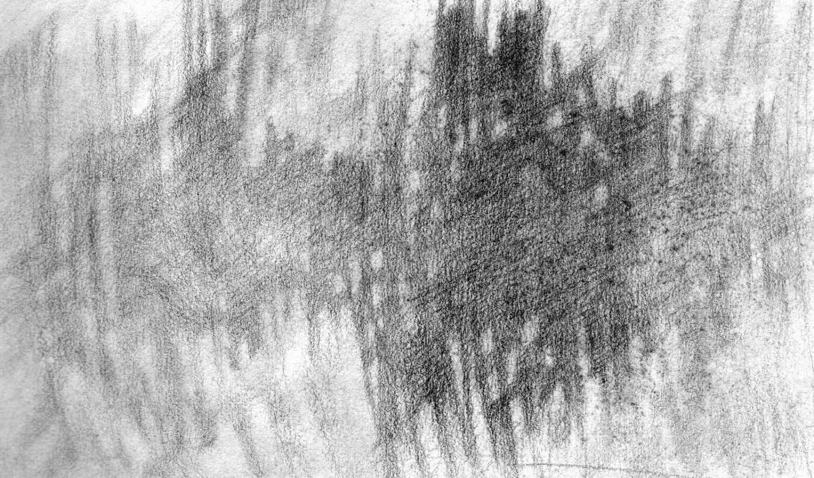 abstract pencil drawing reedscape artist janine aykens
