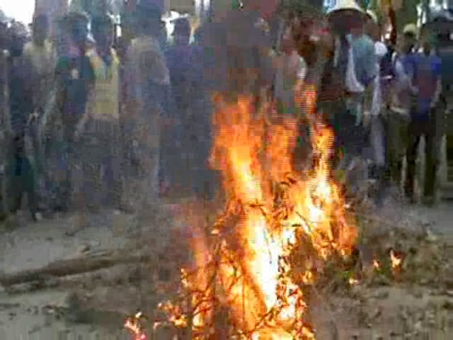 Tanaman Dimusnahkan, Petani Kolaka Bentrok dengan Polisi