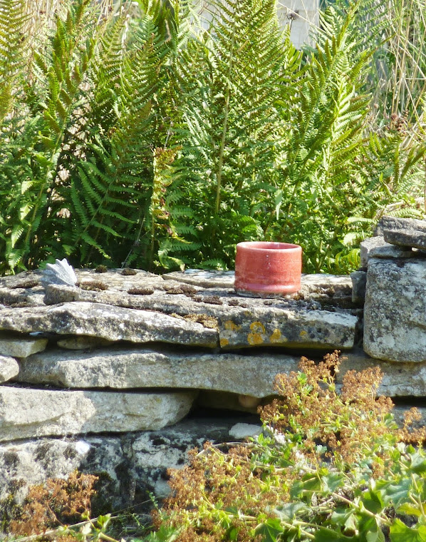 Red pot in the garden