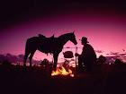 Gaucho! seu  Chimarrão e seu Cavalo Crioulo!