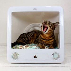 Casas para gatos a partir de monitores viejos