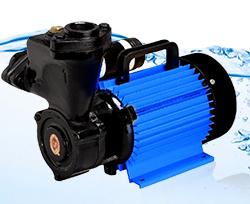 CRI Monoblock Pump Royale-E100 (NR-5) (1HP) Online, India - Pumpkart.com