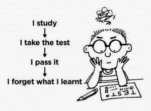 I study, I take the test, I pass it, I forget what I learnt