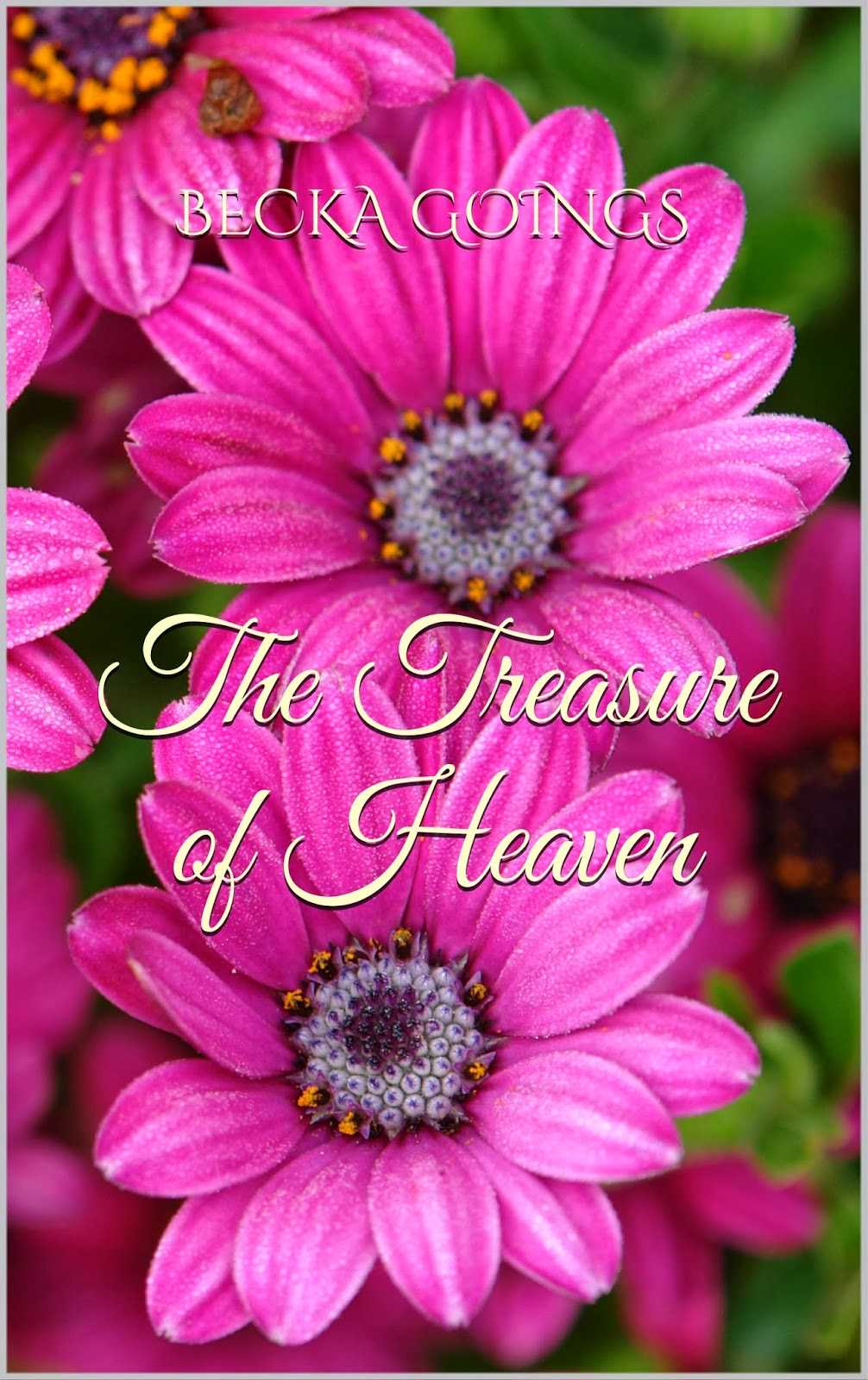 http://www.amazon.com/Treasure-Heaven-Becka-Goings-ebook/dp/B00INCJGGG/ref=sr_1_1?s=digital-text&ie=UTF8&qid=1393374066&sr=1-1