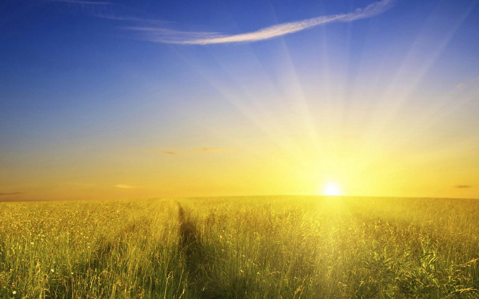 http://3.bp.blogspot.com/-uyOUYW03C08/Tq0m8hc4ViI/AAAAAAAAAgE/jyOign6gDwg/s1600/sunshine-wallpaper_1920x1200.jpg