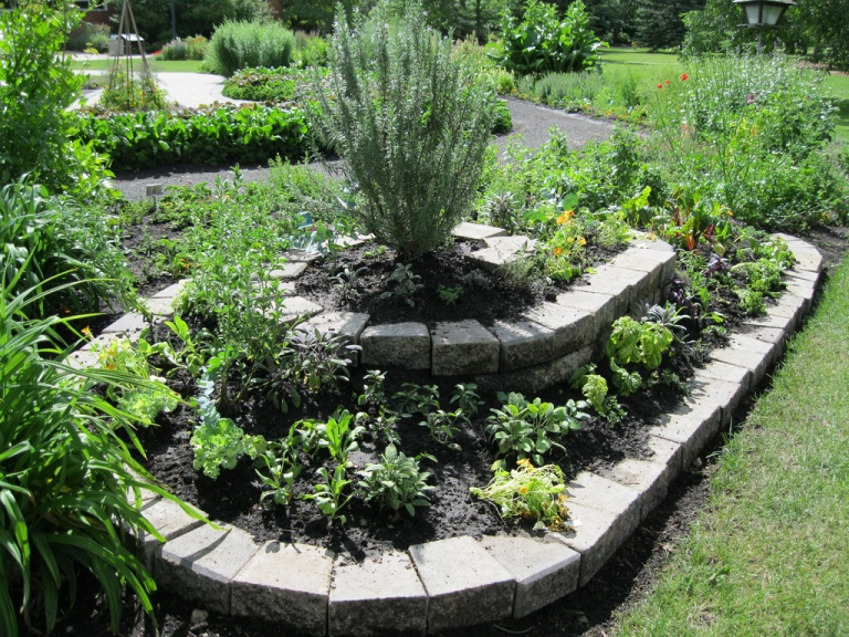 10 beautiful ideas for herb garden