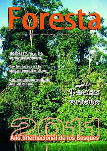 REVISTA FORESTA