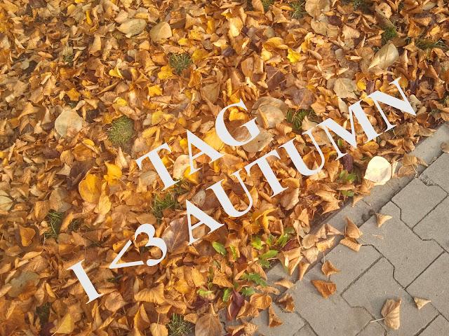 TAG: Kocham jesień ♥☁☔