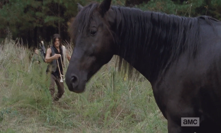 The Walking Dead - Forget - Review and Discussion