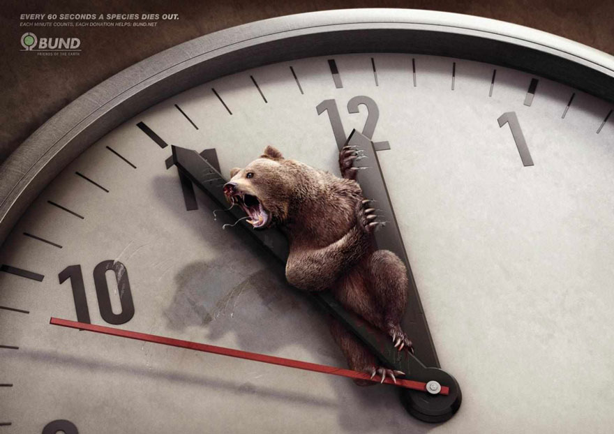 Every 60 Seconds A Species Dies Out. Each Minute Counts -BUND
