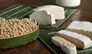 Manfaat Mengkonsumsi Tahu Dan Tempe Yang Tinggi Protein