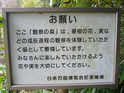万博公園 観察の森