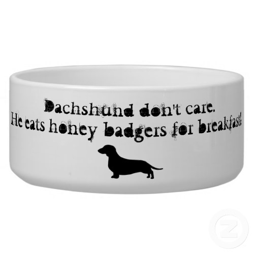 Dachshunds eat honey badgers zazzle_petbowl