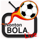 Nonton EURO 2012